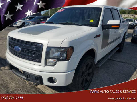 2013 Ford F-150 for sale at Paris Auto Sales & Service in Big Rapids MI
