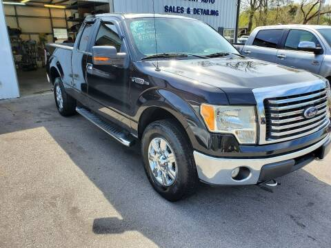 2010 Ford F-150 for sale at DISCOUNT AUTO SALES in Johnson City TN