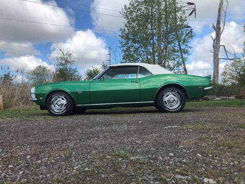 1968 Chevrolet Camaro for sale at Online Auto Connection in West Seneca NY