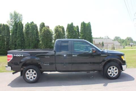 2014 Ford F-150 for sale at D & B Auto Sales LLC in Washington Township MI