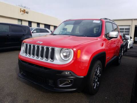 2016 Jeep Renegade for sale at Matthew's Stop & Look Auto Sales in Detroit MI