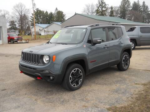 2015 Jeep Renegade for sale at Shaw Motor Sales in Kalkaska MI