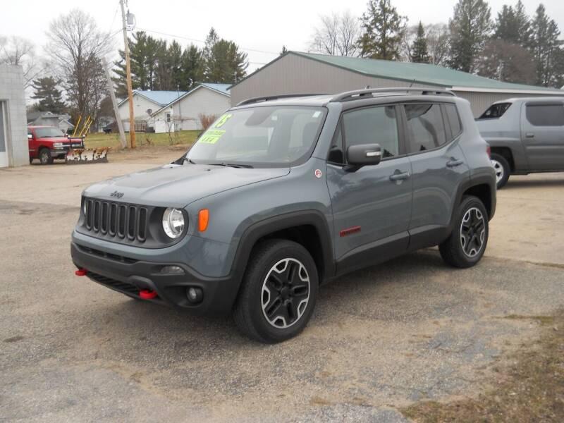 2015 Jeep Renegade for sale at Shaw Motor Sales in Kalkaska MI