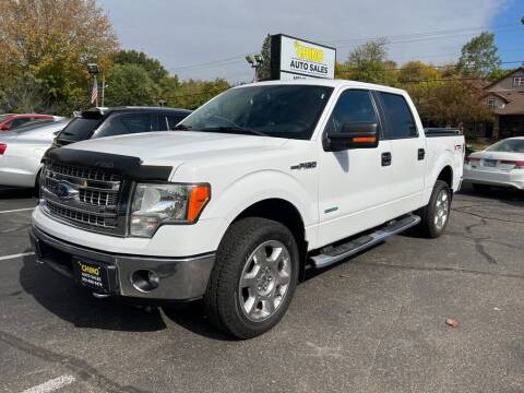 2014 Ford F-150 for sale at Chinos Auto Sales in Crystal MN
