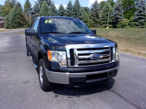 2012 Ford F-150 for sale at Birmingham Automotive in Birmingham OH