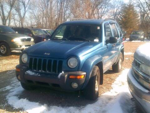 2003 Jeep Liberty for sale at WEINLE MOTORSPORTS in Cleves OH