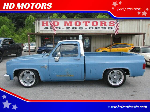 1981 Chevrolet C/K 10 Series for sale at HD MOTORS in Kingsport TN