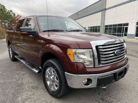 2010 Ford F-150 for sale at PM Auto Group LLC in Chantilly VA