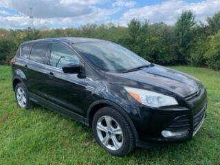 2013 Ford Escape for sale at Stiener Automotive Group in Columbus OH