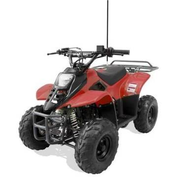 2021 OFFROAD MALL 0957 110cc Youth ATV for sale at A C Auto Sales in Elkton MD