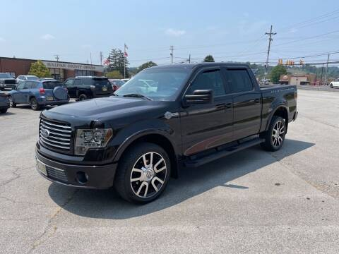 2010 Ford F-150 for sale at Carl's Auto Incorporated in Blountville TN