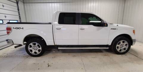 2010 Ford F-150 for sale at Ubetcha Auto in St. Paul NE