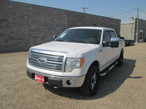 2010 Ford F-150 for sale at Stagner INC in Lamar CO