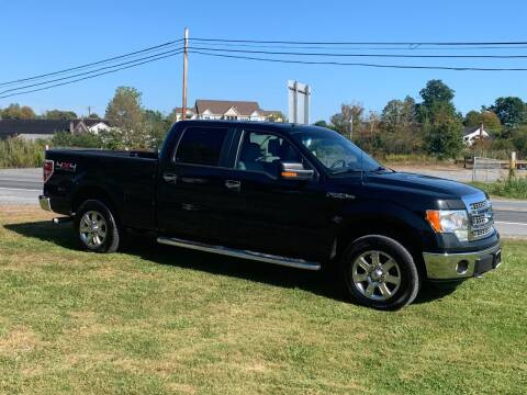 2014 Ford F-150 for sale at Saratoga Motors in Gansevoort NY