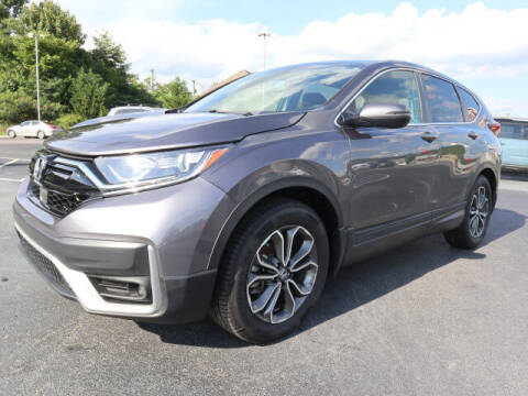 2020 Honda CR-V for sale at RUSTY WALLACE KIA OF KNOXVILLE in Knoxville TN