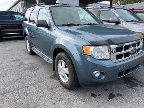 2010 Ford Escape for sale at Lakeshore Auto Wholesalers in Amherst OH