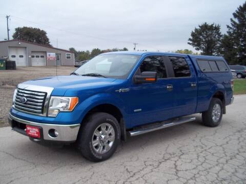 2011 Ford F-150 for sale at SHULLSBURG AUTO in Shullsburg WI