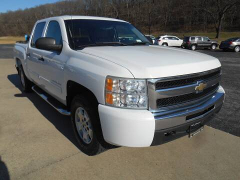 2010 Chevrolet Silverado 1500 for sale at Maczuk Automotive Group in Hermann MO