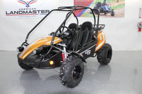 2021 HAMMERHEAD OFF-ROAD GTS 150 Go Kart for sale at Lansing Auto Mart in Lansing KS