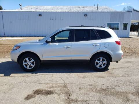 2007 Hyundai Santa Fe for sale at Steve Winnie Auto Sales in Edmore MI