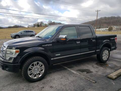 2013 Ford F-150 for sale at G T Auto Group in Goodlettsville TN