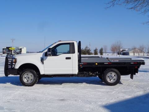 2017 Ford F-250 Super Duty for sale at Burkholder Truck Sales LLC (Edina) in Edina MO