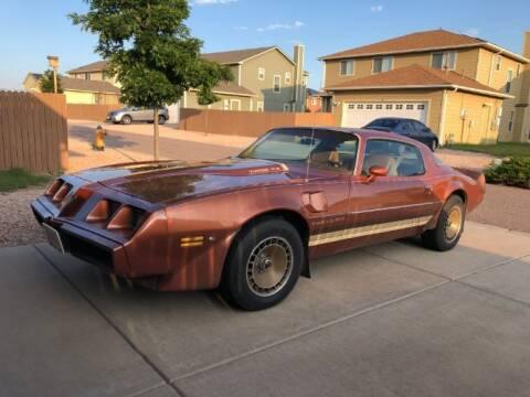 1980 Pontiac Firebird for sale at Classic Car Deals in Cadillac MI