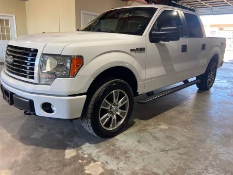 2014 Ford F-150 for sale at Safe Trip Auto Sales in Dallas TX