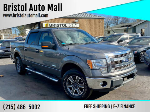 2013 Ford F-150 for sale at Bristol Auto Mall in Levittown PA