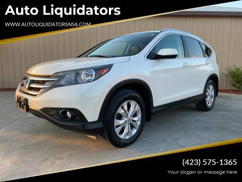 2014 Honda CR-V for sale at Auto Liquidators in Bluff City TN