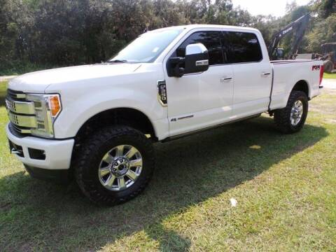 2019 Ford F-250 Super Duty for sale at TIMBERLAND FORD in Perry FL