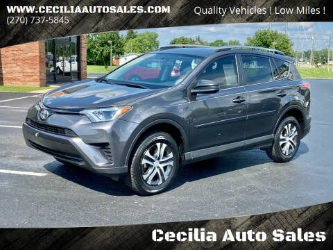 2016 Toyota RAV4 for sale at Cecilia Auto Sales in Elizabethtown KY