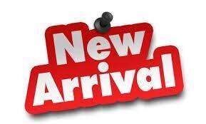 2014 Ford F-150 for sale at Auto Pro Auto Sales in Lewiston ME