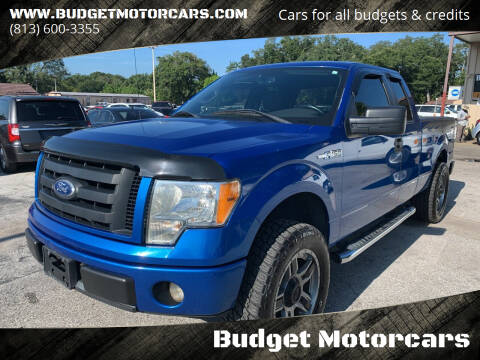 2010 Ford F-150 for sale at Budget Motorcars in Tampa FL