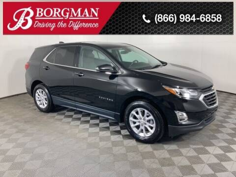 2019 Chevrolet Equinox for sale at BORGMAN OF HOLLAND LLC in Holland MI