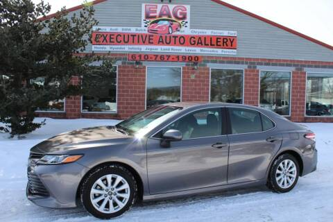 2018 Toyota Camry for sale at EXECUTIVE AUTO GALLERY INC in Walnutport PA