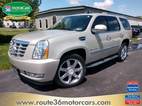 2010 Cadillac Escalade for sale at ROUTE 36 MOTORCARS in Dublin OH