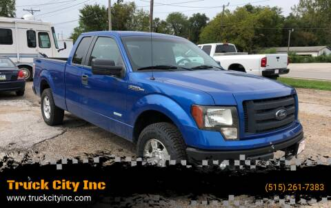 2012 Ford F-150 for sale at Truck City Inc in Des Moines IA