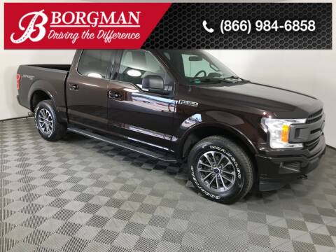2018 Ford F-150 for sale at BORGMAN OF HOLLAND LLC in Holland MI