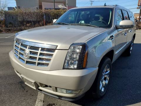 2008 Cadillac Escalade ESV for sale at MAGIC AUTO SALES in Little Ferry NJ
