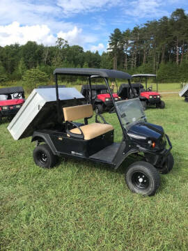 2016 Cushmam/ EZ GO 1200 Pro for sale at Mathews Turf Equipment in Hickory NC
