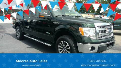 2014 Ford F-150 for sale at Moores Auto Sales in Greeneville TN