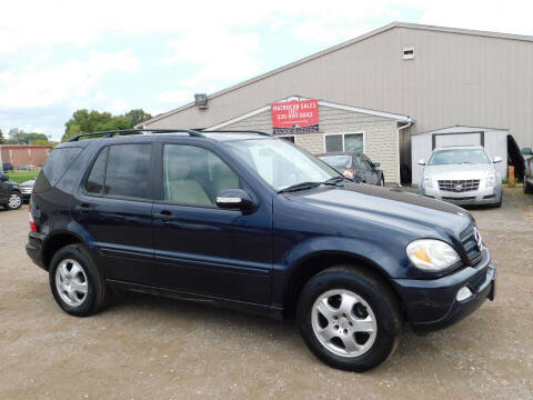 2002 Mercedes-Benz M-Class for sale at Macrocar Sales Inc in Akron OH