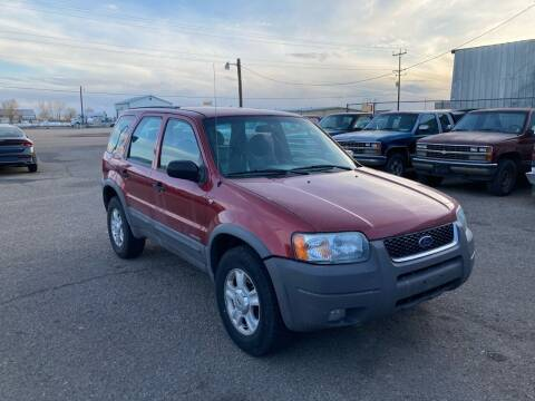 2001 Ford Escape for sale at AFFORDABLY PRICED CARS LLC in Mountain Home ID
