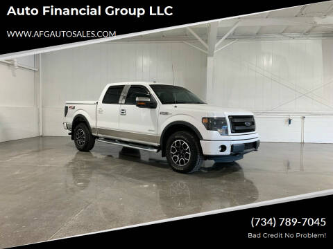 2013 Ford F-150 for sale at Auto Financial Group LLC in Flat Rock MI