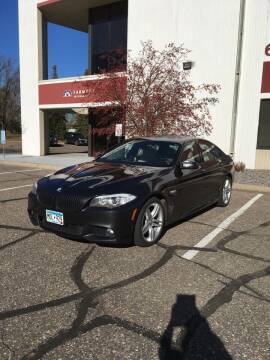 2011 BMW 5 Series for sale at Specialty Auto Wholesalers Inc in Eden Prairie MN
