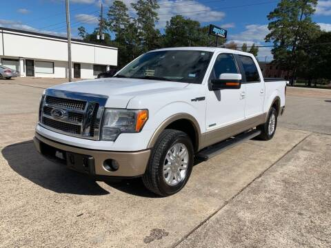 2011 Ford F-150 for sale at AUTO WOODLANDS in Magnolia TX