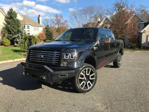 2010 Ford F-150 for sale at CLIFTON COLFAX AUTO MALL in Clifton NJ