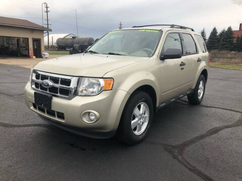 2011 Ford Escape for sale at Mike's Budget Auto Sales in Cadillac MI