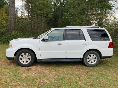 2005 Lincoln Navigator for sale at Expressway Auto Auction in Howard City MI